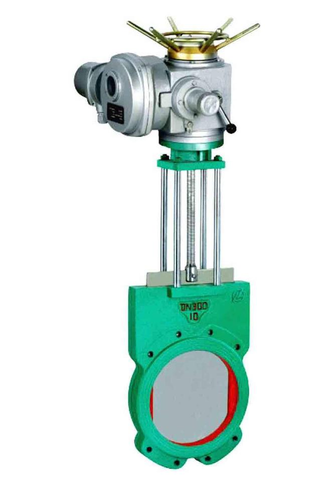 Electric gate valve.jpeg